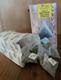 Weihnachtsmix (20 Kräuterpyramiden)